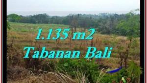 Exotic PROPERTY LAND IN TABANAN FOR SALE TJTB253
