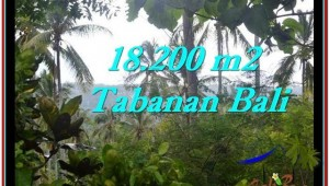 Magnificent PROPERTY TABANAN LAND FOR SALE TJTB254