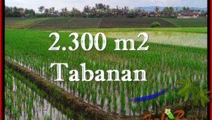 Exotic 2,400 m2 LAND FOR SALE IN TABANAN BALI TJTB263