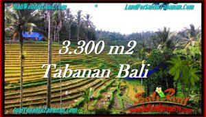 Magnificent PROPERTY Tabanan Selemadeg 3,300 m2 LAND FOR SALE TJTB274