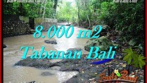 Exotic PROPERTY 8,000 m2 LAND FOR SALE IN Tabanan Selemadeg TJTB287
