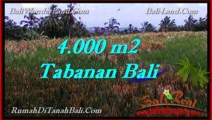 Affordable LAND IN Tabanan Selemadeg BALI FOR SALE TJTB288