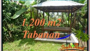 Beautiful PROPERTY TABANAN LAND FOR SALE TJTB294