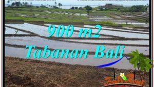 Beautiful 900 m2 LAND IN Tabanan Selemadeg FOR SALE TJTB308