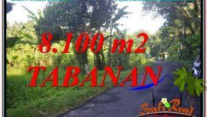 8,100 m2 LAND SALE IN Tabanan Marga BALI TJTB329