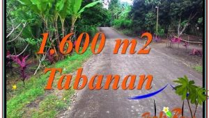 Affordable PROPERTY Tabanan Selemadeg LAND FOR SALE TJTB337