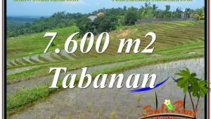 Exotic PROPERTY LAND SALE IN Tabanan Selemadeg TJTB347