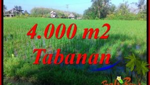 FOR SALE Magnificent PROPERTY LAND IN Tabanan Selemadeg TJTB352