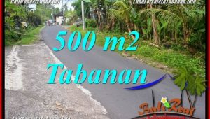 Affordable Tabanan Kerambitan BALI 500 m2 LAND FOR SALE TJTB362