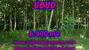 Astounding Property in Bali for sale, Rice fields and Forest view land in Ubud Bali – TJUB401