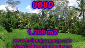 Fantastic Property for sale in Bali, land sale in Ubud Bali – TJUB404
