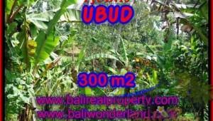 Beautiful LAND SALE IN Sentral Ubud BALI TJUB415