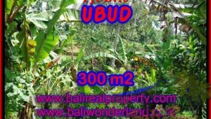 Beautiful LAND SALE IN Sentral Ubud BALI TJUB415