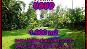 Exotic PROPERTY 1,600 m2 LAND SALE IN UBUD BALI TJUB416