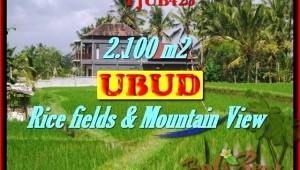 FOR SALE LAND IN Ubud Tegalalang TJUB423