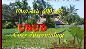 Exotic PROPERTY 600 m2 LAND SALE IN Ubud Pejeng BALI TJUB452