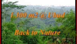 Exotic 1,300 m2 LAND SALE IN UBUD TJUB481