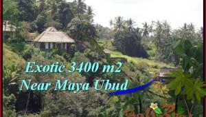 LAND IN Ubud Tengkulak BALI FOR SALE TJUB514