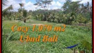 FOR SALE Affordable PROPERTY 1,070 m2 LAND IN UBUD BALI TJUB536