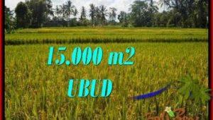 Beautiful PROPERTY 15,000 m2 LAND SALE IN Ubud Tegalalang TJUB551