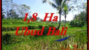 FOR SALE Affordable LAND IN Ubud Payangan BALI TJUB553