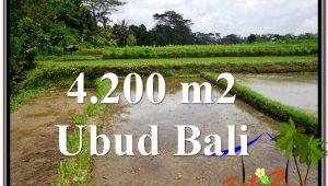 FOR SALE Exotic LAND IN Ubud Tampak Siring BALI TJUB561