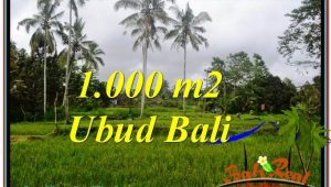 Magnificent 1,000 m2 LAND FOR SALE IN UBUD BALI TJUB570