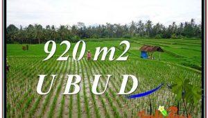 Magnificent 920 m2 LAND SALE IN UBUD BALI TJUB575