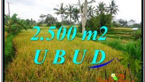 FOR SALE Beautiful 2,500 m2 LAND IN UBUD BALI TJUB577