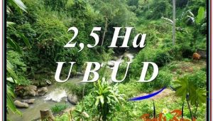 Affordable PROPERTY 26,000 m2 LAND FOR SALE IN Sentral Ubud TJUB579