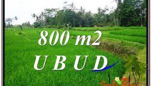 Magnificent PROPERTY Ubud Pejeng 800 m2 LAND FOR SALE TJUB581