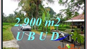 Affordable LAND IN Sentral Ubud BALI FOR SALE TJUB586