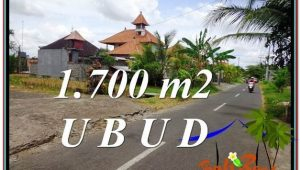 Affordable LAND IN Sentral Ubud BALI FOR SALE TJUB588