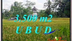 Exotic PROPERTY LAND FOR SALE IN UBUD TJUB596