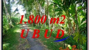 FOR SALE Magnificent PROPERTY LAND IN UBUD TJUB597