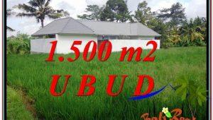 LAND IN Sentral Ubud BALI FOR SALE TJUB600