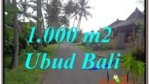 Beautiful PROPERTY LAND FOR SALE IN UBUD TJUB604