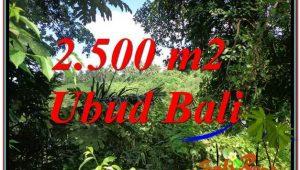 Affordable LAND SALE IN Ubud Pejeng BALI TJUB605