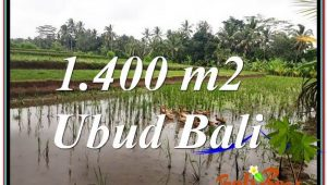 Magnificent PROPERTY LAND SALE IN UBUD TJUB615