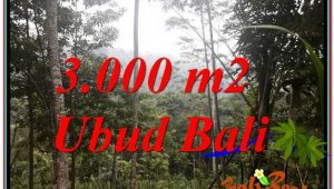 FOR SALE Beautiful PROPERTY LAND IN UBUD TJUB617