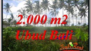 Magnificent 2,000 m2 LAND SALE IN UBUD BALI TJUB625