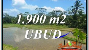 Affordable PROPERTY 1,900 m2 LAND FOR SALE IN Ubud Payangan TJUB629