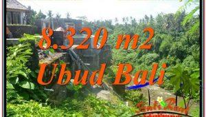Beautiful PROPERTY 8,320 m2 LAND SALE IN Sentral / Ubud Center TJUB635