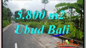 LAND SALE IN Ubud Tegalalang BALI TJUB637