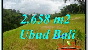 Magnificent LAND FOR SALE IN UBUD TJUB641