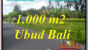 FOR SALE Magnificent PROPERTY LAND IN UBUD TJUB649