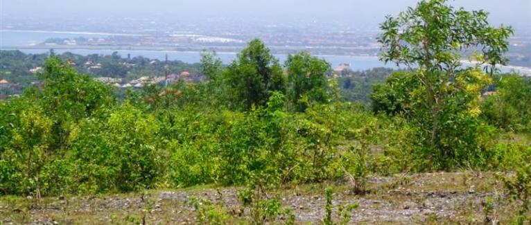 Land for sale in Bali 17.1 Ares in Jimbaran Ungasan