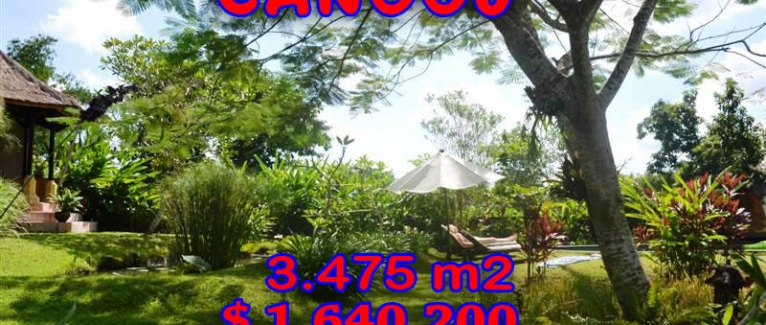 Land for sale in Bali 3,475 m2 in Canggu