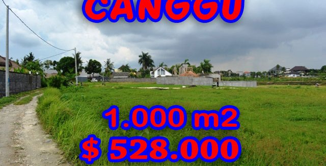 Land for sale in Canggu 10 Are Ares in Canggu Brawa Bali