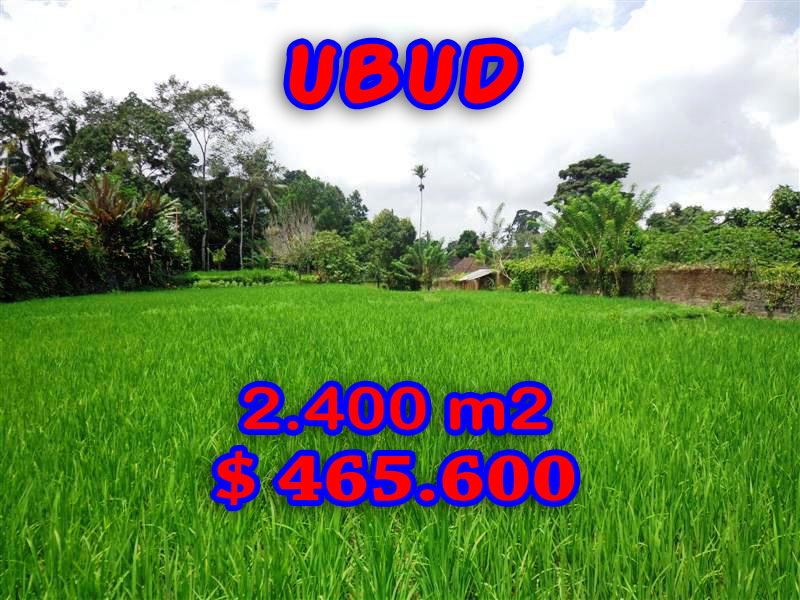 Affordable 2.400 m2 Land in Ubud Bali For sale